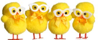 kycklingar-2010